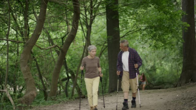 Seniors hiking in the woods