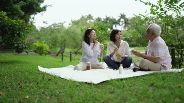晴れた日の喜びの週末ピクニックのシニア - グリーン点の映像素材/bロール
