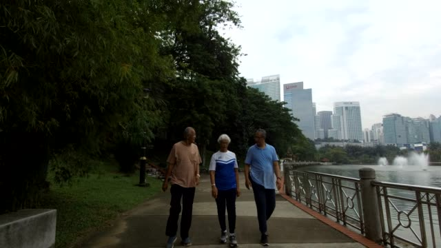 seniors walking in the park - three people stock videos & royalty-free footage