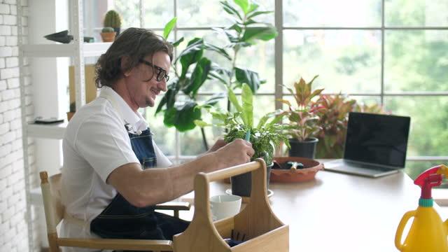 植物屋花屋の小さな植物をトリミングするセノワールの男 - グリーンハウス点の映像素材/bロール