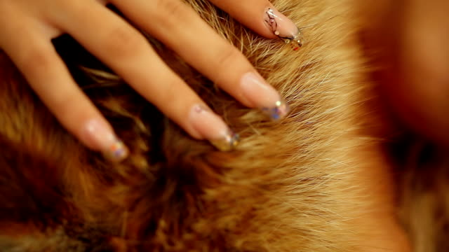 stockvideo's en b-roll-footage met sensual woman in furs - dierenhaar