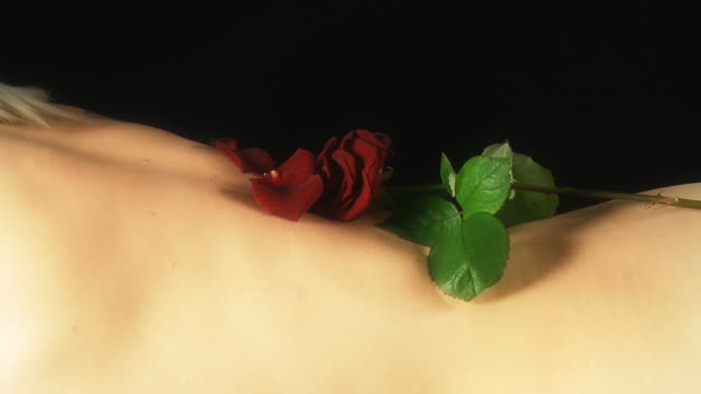 hd dolly: sensual woman with scarlet rose - rose petals stock videos and b-roll footage