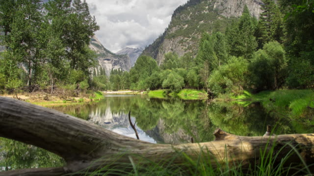 sentinel beach, yosemite national park - time lapse - fallen tree stock videos and b-roll footage