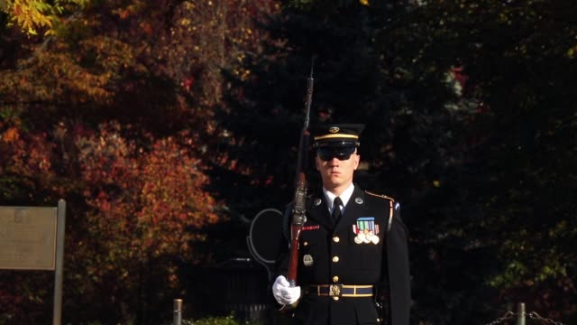 a sentinel from the 3rd us infantry regiment also called the old guard marches while guarding the tomb of the unknowns on veterans day at arlington... - infantry stock videos & royalty-free footage