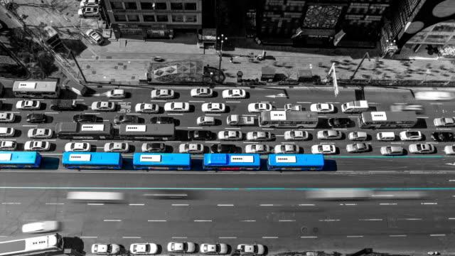 Seoul City Zoom