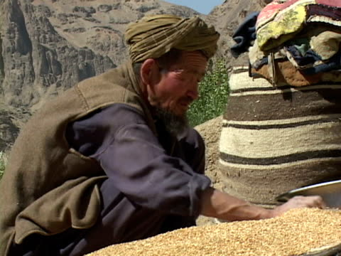 september 15, 2005 farmer selling cereal / bamian, afghanistan / audio - solo un uomo maturo video stock e b–roll