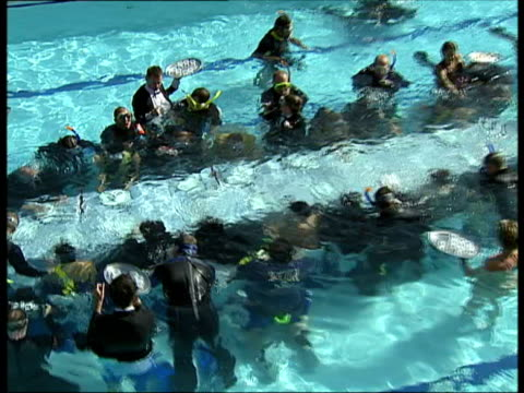 september 2007 group of people participating in underwater dinner party for charity benefit/ london, uk/ audio - tuxedo stock videos & royalty-free footage