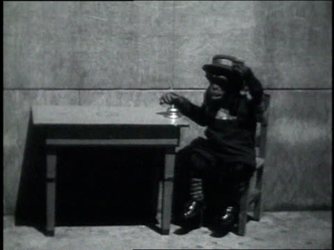 September 7, 1931 WS chimpanzee being served a beer at a table / Atlanta, Georgia, United States