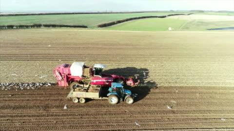 vídeos y material grabado en eventos de stock de sequence aerials of potato harvest, hull - arar