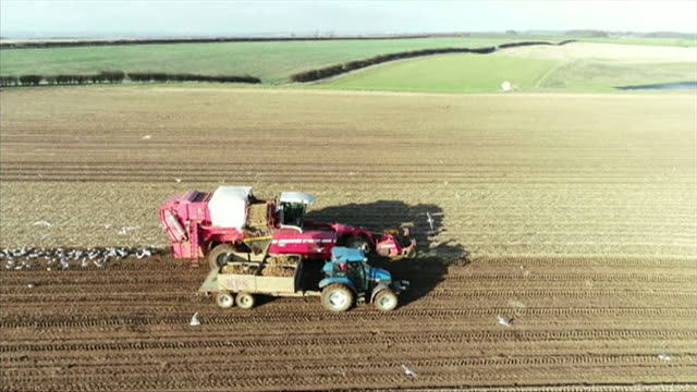 sequence aerials of potato harvest, hull - till stock videos & royalty-free footage