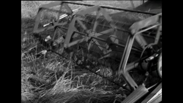 sequence of a field being harvested by combine harvester; 1963 - agricultural machinery stock videos & royalty-free footage