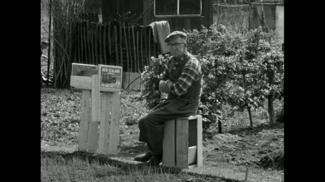 sequence of gvs of british allotment gardens with older man; 1965 - 1965 stock videos & royalty-free footage