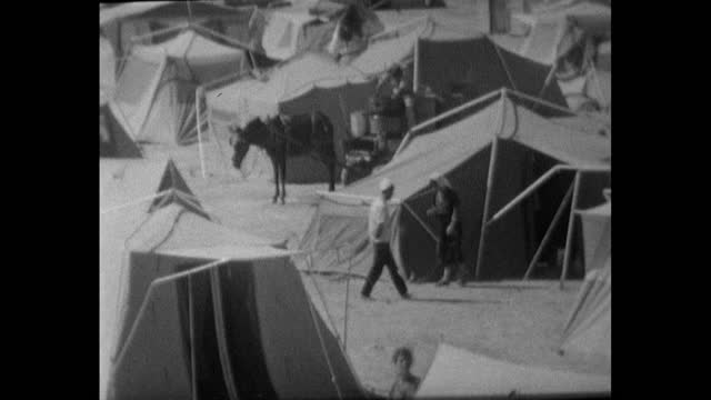 sequence of gvs showing unidentifiable people living in sparse conditions in a refugee camp near amman and the river jordan; jordan, 1967. has people... - surface level stock videos & royalty-free footage