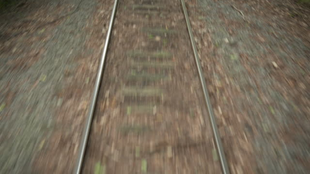 Sequence of shots of small track from the front of a moving train on a heritage railway in the Catskill Mountains, New York State, USA.