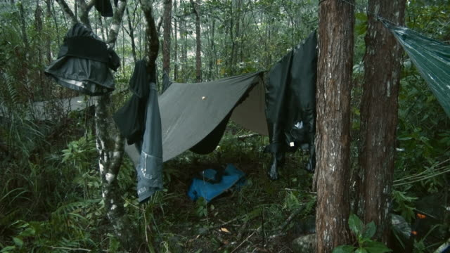 sequence showing a campsite in the papuan rainforest deluged by rain, indonesia. - papua stock videos and b-roll footage