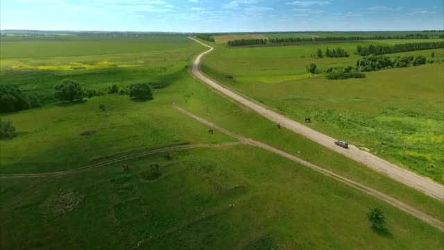 Sequence showing a car driving through idyllic green countryside of Russia's Central Federal District.