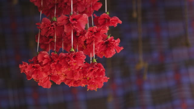 Sequence showing a hanging garland of hibiscus flowers in Guwahati in Assam, India.