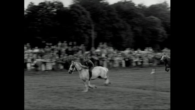 sequence showing a heavy horse race on sussex downs;1951 - galopp gangart von tieren stock-videos und b-roll-filmmaterial