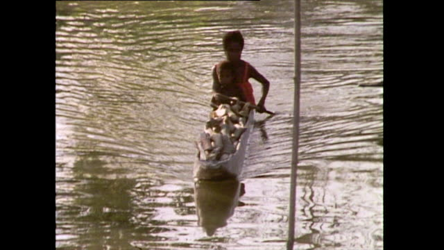 sequence showing a mother a child living a traditional tribal life in papua new guinea 1985 mother paddles a canoe down the river with child seated... - pacific islander stock videos & royalty-free footage