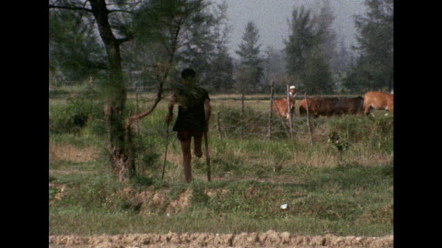 sequence showing a village in vietnam's quang nhai province near to where the my lai massacre took place - massenmord stock-videos und b-roll-filmmaterial