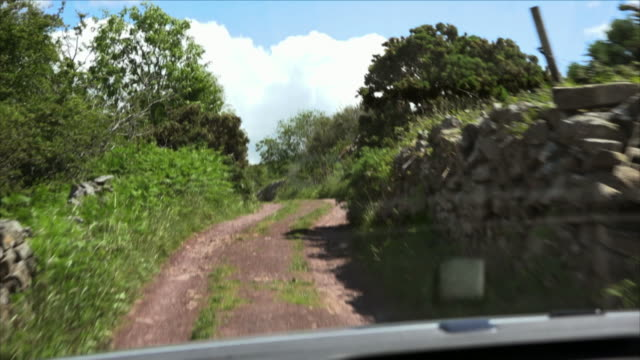 sequence showing a volkswagen tiguan car reaching a fork in a narrow country lane amongst the splendid green of county limerick's landscape, republic of ireland. - single track stock videos and b-roll footage