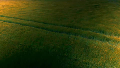 sequence showing a wondrous sunset over fields in northern england and the large setting sun behind clouds seen from alabama, us. - grass点の映像素材/bロール