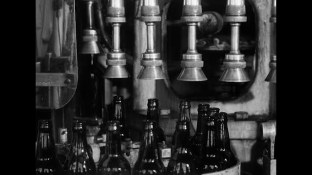 vidéos et rushes de sequence showing cider being bottled and quality checked in a cider factory. - travailleur manuel