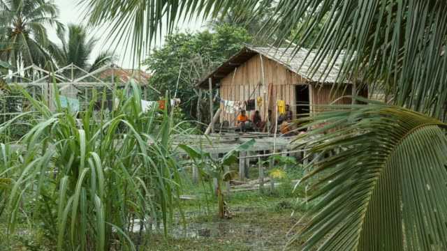 sequence showing everyday village life for the people of yaosakor in papua, indonesia. - 雨林点の映像素材/bロール
