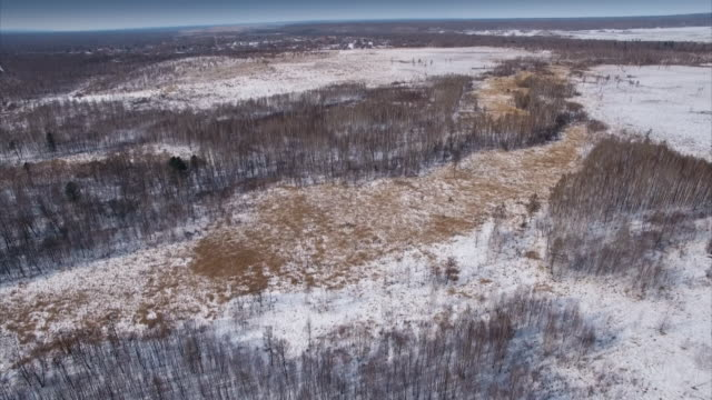 sequence showing felled areas of forest in northeastern russia. - russia stock videos & royalty-free footage