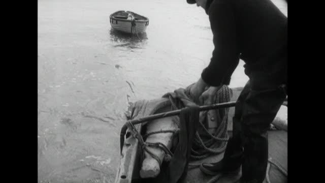 vídeos de stock e filmes b-roll de sequence showing fishermen dropping nets into the sea to catch whitebait - rede de pesca comercial