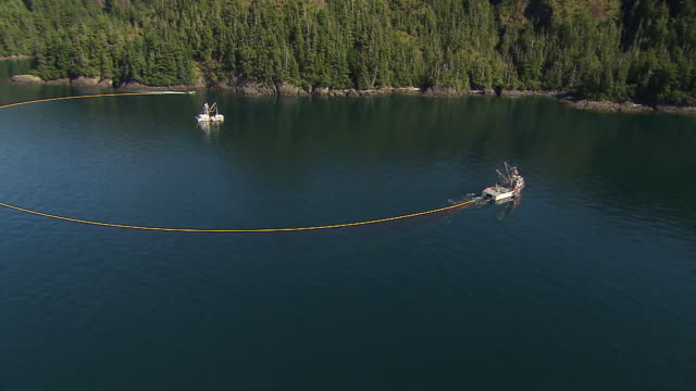 vídeos de stock e filmes b-roll de sequence showing fishing boats laying nets at prince william sound to catch salmon.  - rede de pesca comercial