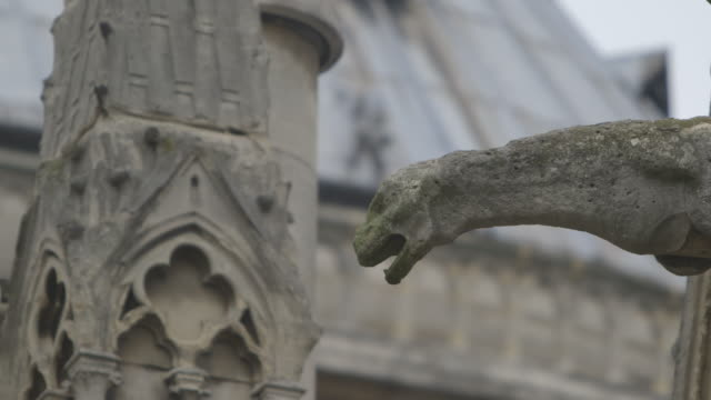Sequence showing focus pulls between gargoyles on Notre Dame de Paris, France.