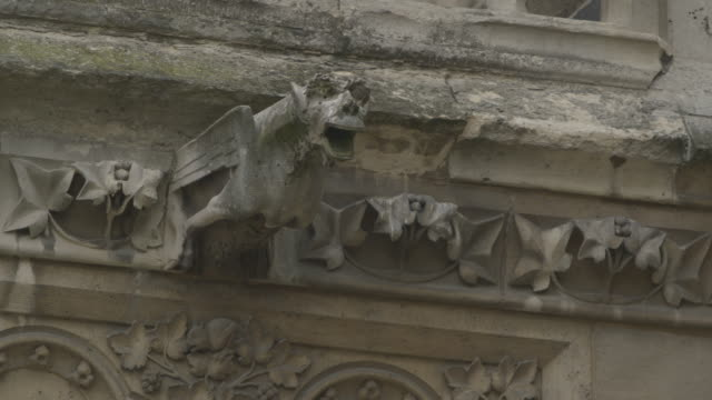 Sequence showing gargoyles on Notre Dame de Paris, France.