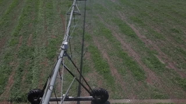 stockvideo's en b-roll-footage met sequence showing irrigation systems at at an arable farm in brazil whose owners take care to farm on land that has already been spoiled amid concern... - monocultuur