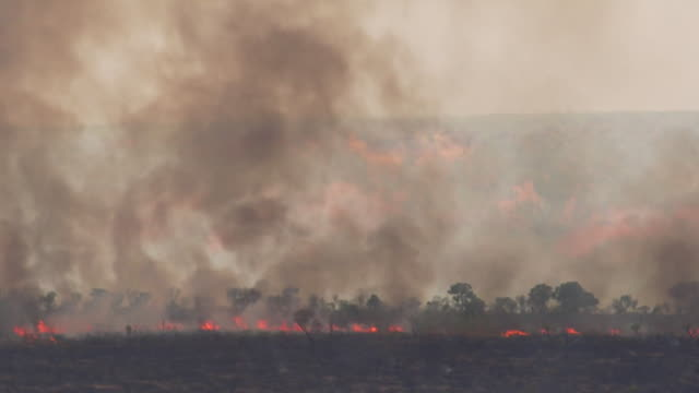 sequence showing land that has been deliberately set on fire possibly in order to clear land for soy production cerrado savannah brazil - smoke physical structure stock videos & royalty-free footage