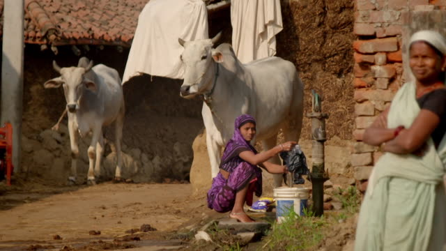 sequence showing people and cattle in a village in bihar, india. - water pump stock videos & royalty-free footage
