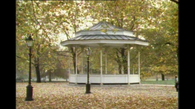 sequence showing people in hyde park during autumn - グランドキーパー点の映像素材/bロール