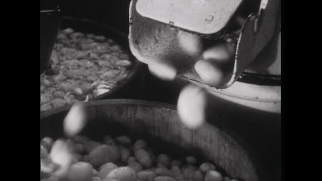 sequence showing potatoes and fish being prepared for cooking at a harry ramsden's fish and chip shop. - snack stock videos & royalty-free footage