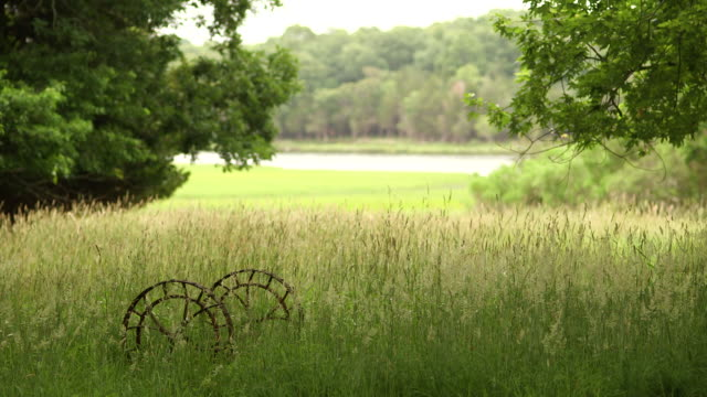 sequence showing rusty metal wheels in a wheat field in east hampton, ny - lakeshore stock videos and b-roll footage