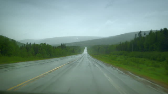 pov sequence showing the view from a car window driving through a remote area in canada in the rain. - ヘラジカ点の映像素材/bロール
