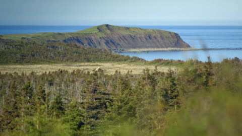 sequence showing views of the coastline on the island of newfoundland, canada. - canada stock videos & royalty-free footage