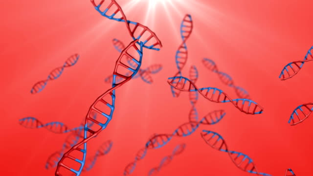 dna sequence:two kinds of dna binding - illustration stock videos & royalty-free footage