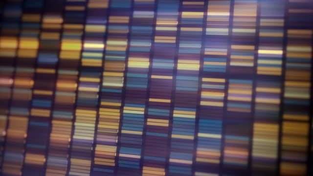 vidéos et rushes de dna sequencing animation - frolow