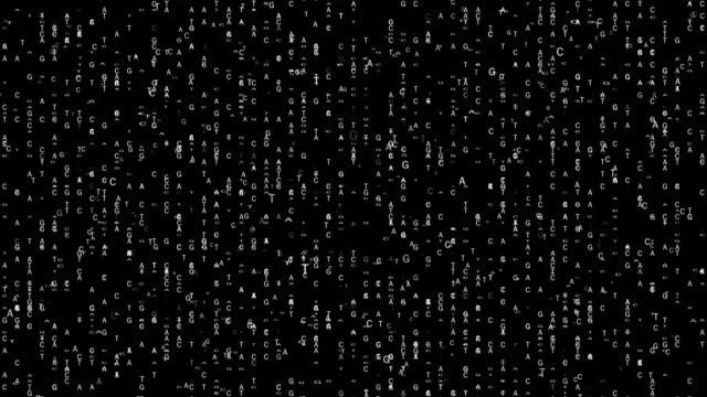 dna sekvensering tacg version - vangen bildbanksvideor och videomaterial från bakom kulisserna