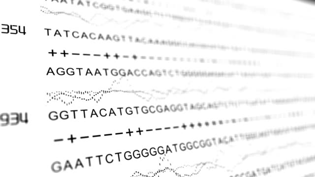 DNA Sequencing TACG