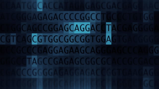 dna sequencing - micrografia video stock e b–roll