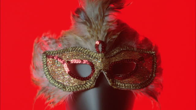 MONTAGE Sequin and feather fetish mask / New York City, New York, United States