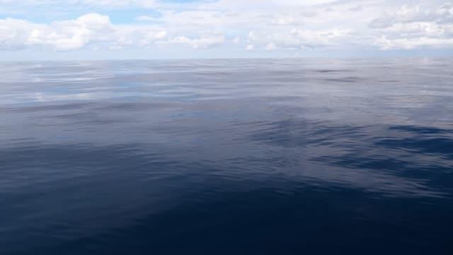 vídeos de stock e filmes b-roll de serene ocean background - cena de tranquilidade