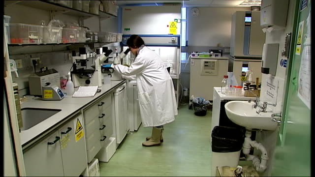 series of breakthroughs on diabetes treatments; scientist in laboratory woman looking into microscope samples under microscope gloved hand on sample... - scienziata video stock e b–roll