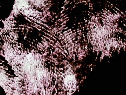 series of smudged fingerprints on white background - fingerprint stock videos & royalty-free footage